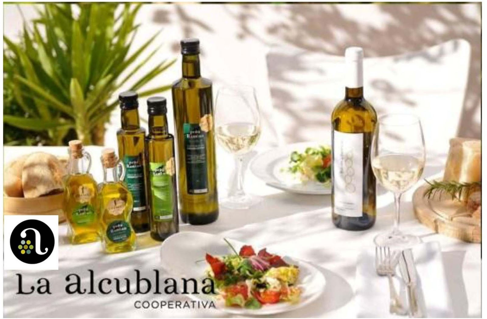 Click Here for Conocer los productos del vino